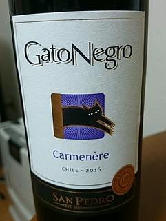 San Pedro Gato Negro Carmenère