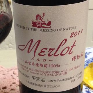 五味葡萄酒 Merlot 樽熟成