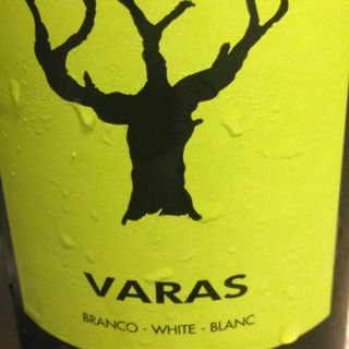 Casa Santos Lima Varas White