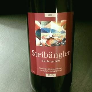 Steibangler Blauburgunder
