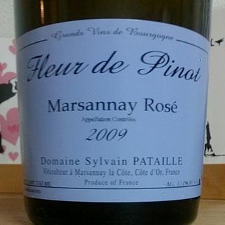 Dom. Sylvain Pataille Fleur de Pinot Marsannay Rosé(ドメーヌ・シルヴァン・パタイユ フルール・ド・ピノ マルサネ・ロゼ)