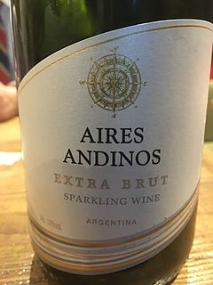 Aires Andinos Sparkling Extra Brut