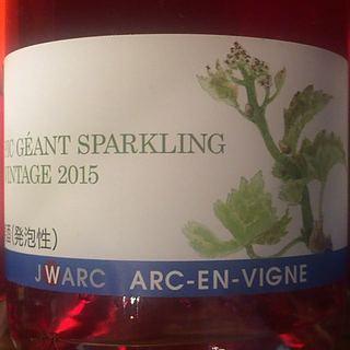 Arc En Vigne Pic Géant Sparkling