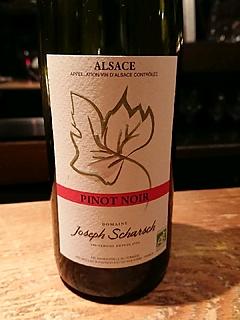 Joseph Scharsch Pinot Noir(ジョセフ・シャルヒ ピノ・ノワール)