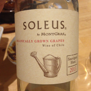 Soleus by MontGras Sauvignon Blanc