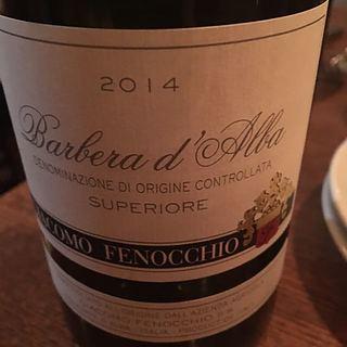 Giacomo Fenocchio Barbera d'Alba Superiore(ジャコモ・フェノッキオ バルベーラ・ダルバ スペリオーレ)