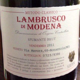 Gavioli Lambrusco di Modena Spumante Brut(ガヴィオリ ランブルスコ・ディ・モデナ スプマンテ・ブリュット)