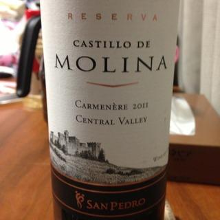 San Pedro Castillo de Molina Carmenère Reserva