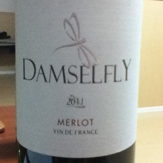 Damselfly Merlot