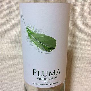 Pluma Vinho Verde