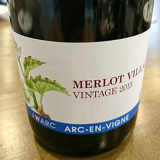 Arc En Vigne Merlot Village