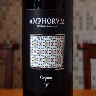 Amphorum Cabernet Sauvignon Organic