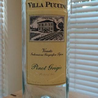 Villa Puccini Pinot Grigio Veneto