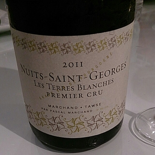 Marchand Tawse Nuits Saint Georges 1er Cru Les Terres Blanches
