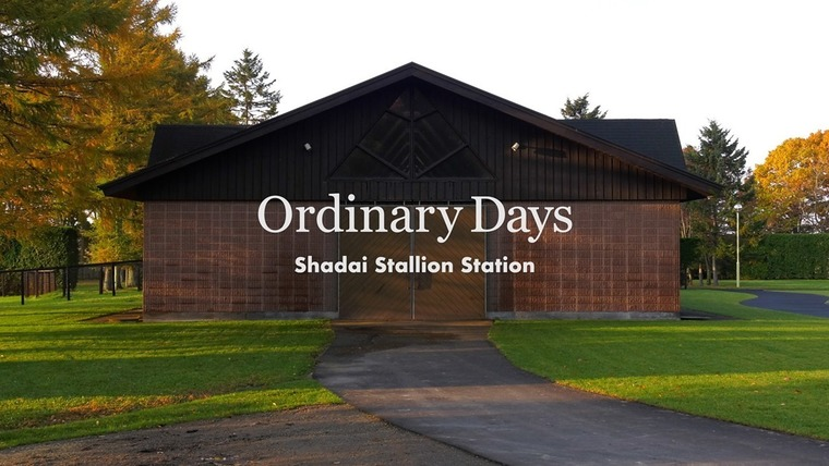 Thumb 760 1day stallion station