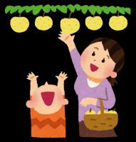 【9月8日】障害のある方と梨狩り&生田緑地散策ツアー♪ボランティア大募集!!【急募】