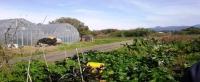 【ご参加大歓迎】3月21日(土)日帰り農作業ボランティアを募集