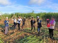 【年末年始】鹿児島最南端の離島「与論島」で村おこしボランティア!