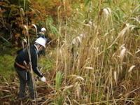 10月3日(土)~4日(日)【湿原の保全整備】そばの里 森林の楽校