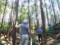 【全5回】森林ボランティア青年リーダー養成講座 in四国