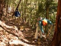 3/15(金)〜17(日)森づくり体験プログラム「四万十川 森林の楽校2019」
