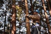 廃校になった小学校を改装した 「ラーニングアーバー横蔵」を拠点に周辺の森づくり