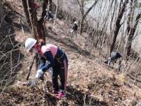 3/2(土)森づくり体験プログラム「神の泉 森林の楽校2019春」