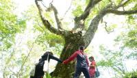 【春休み】北海道の離島「奥尻島」で地域おこしのための住み込み型ボランティア開催!