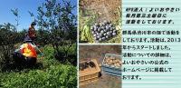 【おひとり様でも大歓迎】8月21日(土) 日帰り農作業ボランティアを募集