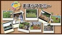 10月13日(日)体験農園ボランティア募集!