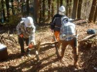 全5回【森林の知識を学び、保全活動を行おう!】森林ボランティア青年リーダー養成講座in東京