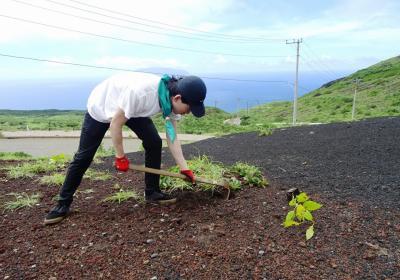 10/2(金)-4(日)開催■三宅島に緑を!植林ボランティア■東京都・三宅島