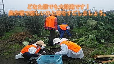 【楽しいひと時を過ごしませんか】11月20日(土)日帰り農作業ボランティ...