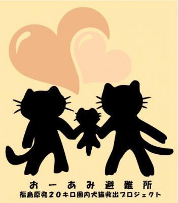 【おーあみ避難所】犬猫シェルターボランティア大募集!【横浜市青葉区】