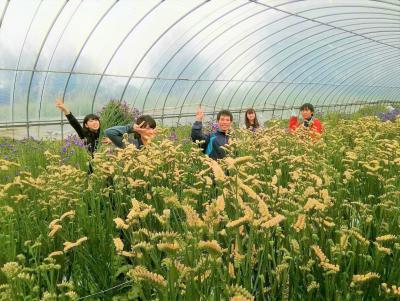 【春休み】奄美大島の北部地域で、有機農業に関わるボランティア!
