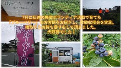 【皆様、大歓迎です】9月18日(土) 日帰り農作業ボランティアを募集