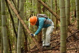 3月20日(金)~22日(日) 四万十川 森林の楽校2020
