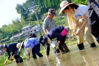 5月23~24日(土・日) 熊野の棚田 田畑の楽校(はたけのがっこう)2020