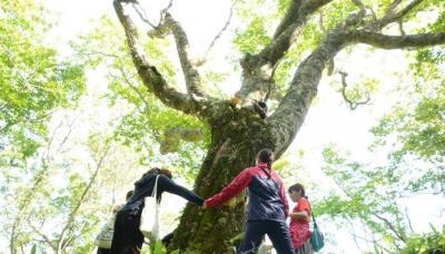 【春休み】北海道の離島「奥尻島」で地域おこしのための住み込み型ボラ...