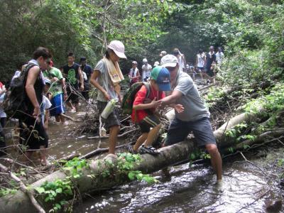 アレルギーの人のための「夏休み環境教育キャンプ2019」ボランティア/8...