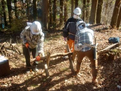 全5回【森林の知識を学び、保全活動を行おう!】森林ボランティア青年リ...