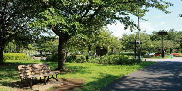 大島小松川公園の写真