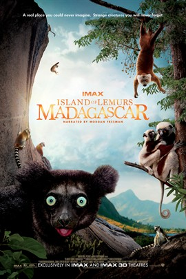 马达加斯加:狐猴之岛完整版下载高清