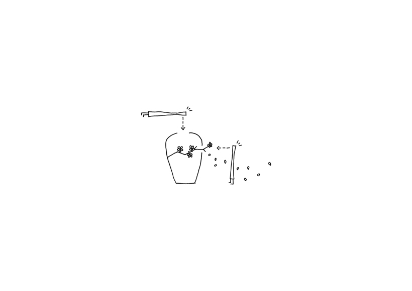 sakura_sketch