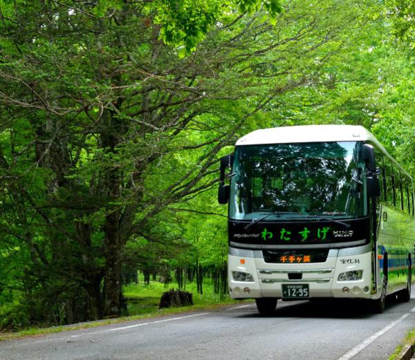 低公害バスは、小田代原、西ノ湖、千手ヶ浜周辺の環境を保全するため平成5年(1993年)4月より運行を開始しました。