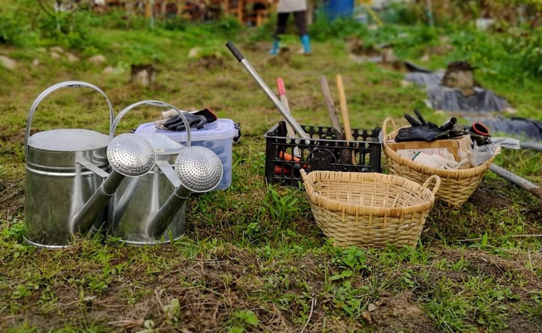 農業社區農耕體驗(第二期)—環保基金「梅窩 Farm to Table 農業社區」計劃