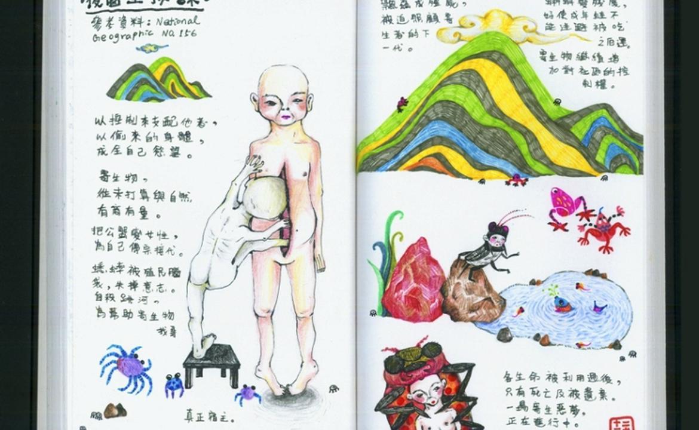 龍尾灘海星:無脊椎動物的疼痛