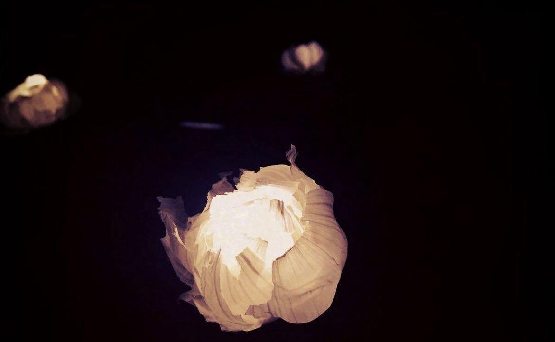靜學堂 :一物的誕生 - 蒜頭燈(清山塾)