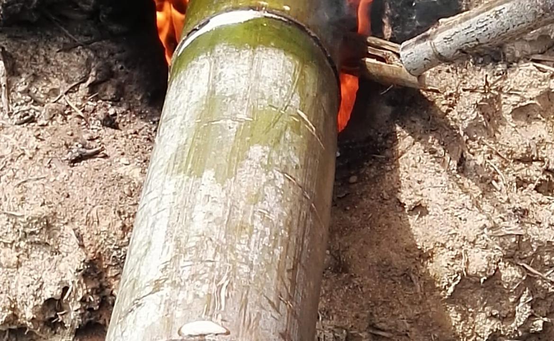 竹。深度碳化防腐處理一天工作坊