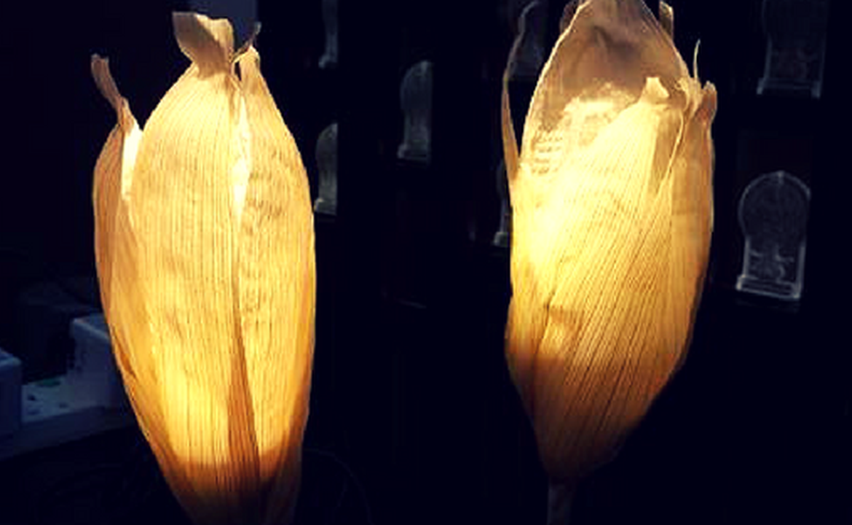 靜學堂 :一物的誕生 – 粟米手工燈